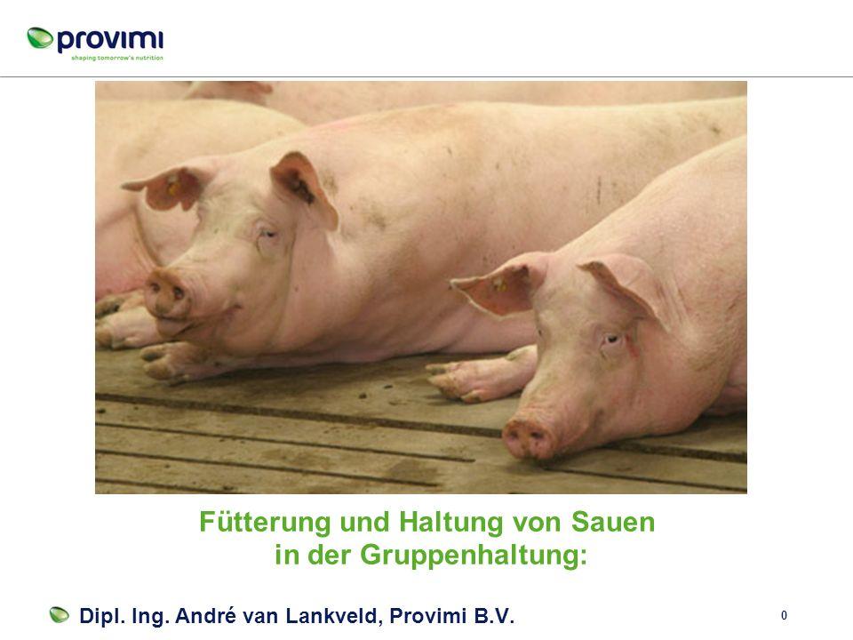 0 Fütterung und Haltung von Sauen in der Gruppenhaltung: Dipl.