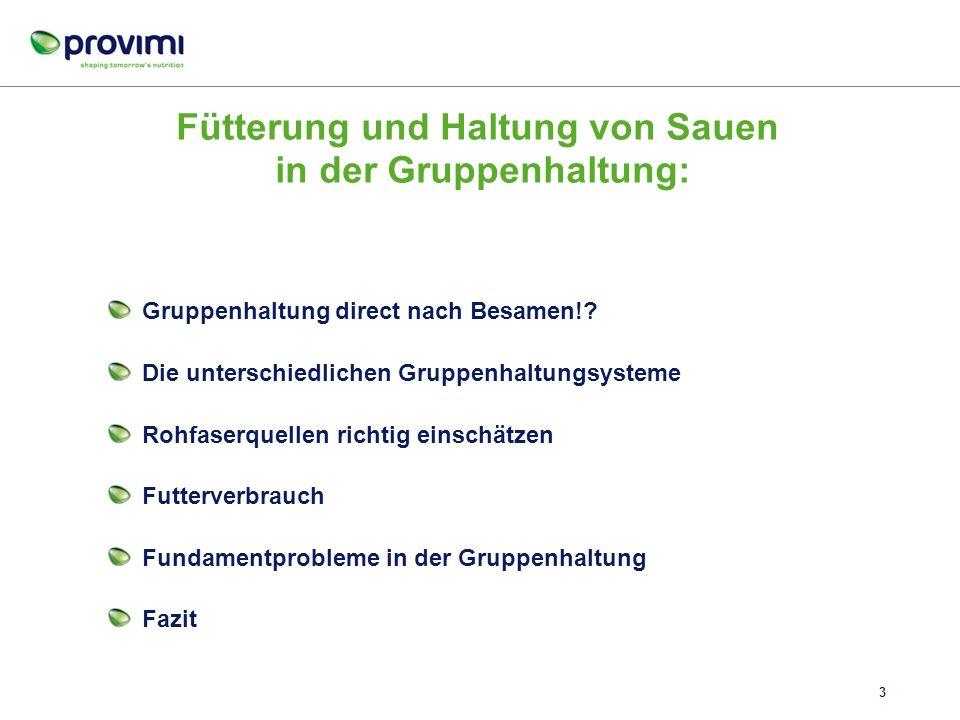 Fütterung und Haltung von Sauen in der Gruppenhaltung: Gruppenhaltung direct nach Besamen!.