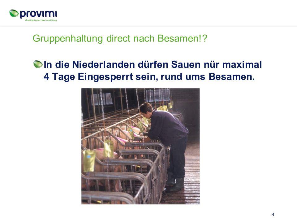 Unterschied = 40 kg/ Wurf = ca. 100 kg/Sau/ Jahr = ca. 25 Euro/Sau Futterkurve für tragende Sauen