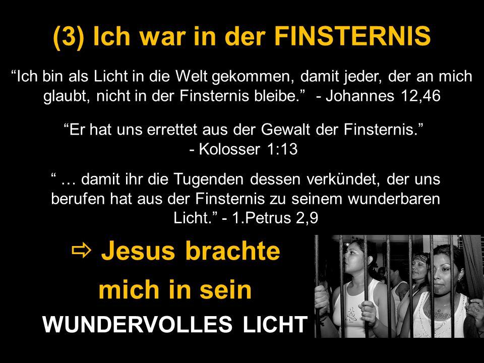 (3) Ich war in der FINSTERNIS Ich bin als Licht in die Welt gekommen, damit jeder, der an mich glaubt, nicht in der Finsternis bleibe. - Johannes 12,4
