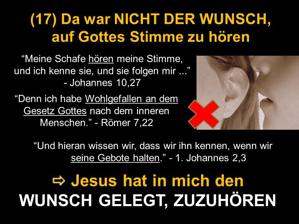 (17) Da war NICHT DER WUNSCH, auf Gottes Stimme zu hören Und hieran wissen wir, dass wir ihn kennen, wenn wir seine Gebote halten. - 1. Johannes 2,3 J