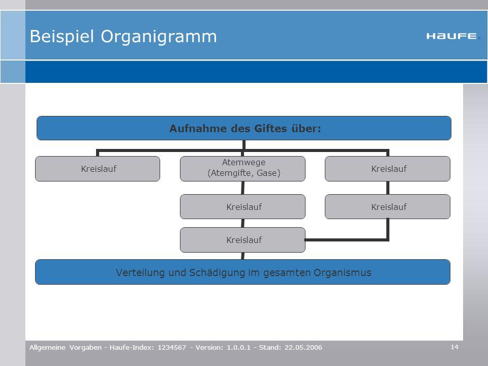 14 Allgemeine Vorgaben - Haufe-Index: 1234567 - Version: 1.0.0.1 - Stand: 22.05.2006 Beispiel Organigramm