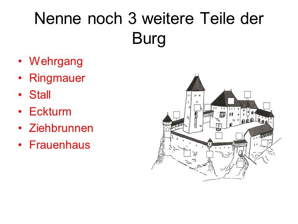 Nenne noch 3 weitere Teile der Burg Wehrgang Ringmauer Stall Eckturm Ziehbrunnen Frauenhaus