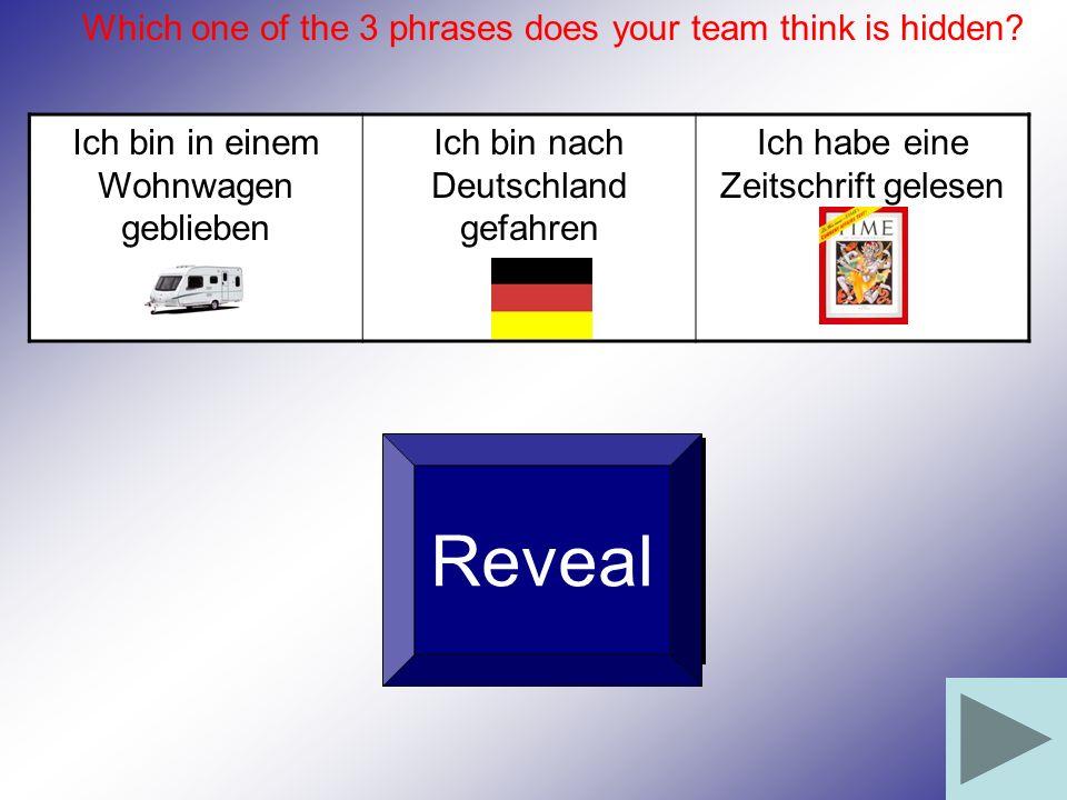 Ich bin in einem Wohnwagen geblieben Ich bin nach Deutschland gefahren Ich habe eine Zeitschrift gelesen Reveal Which one of the 3 phrases does your t