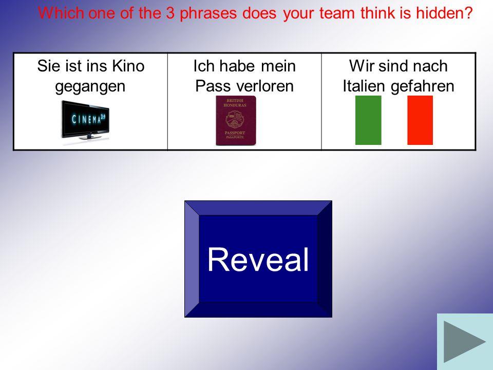 Sie ist ins Kino gegangen Ich habe mein Pass verloren Wir sind nach Italien gefahren Reveal Which one of the 3 phrases does your team think is hidden?