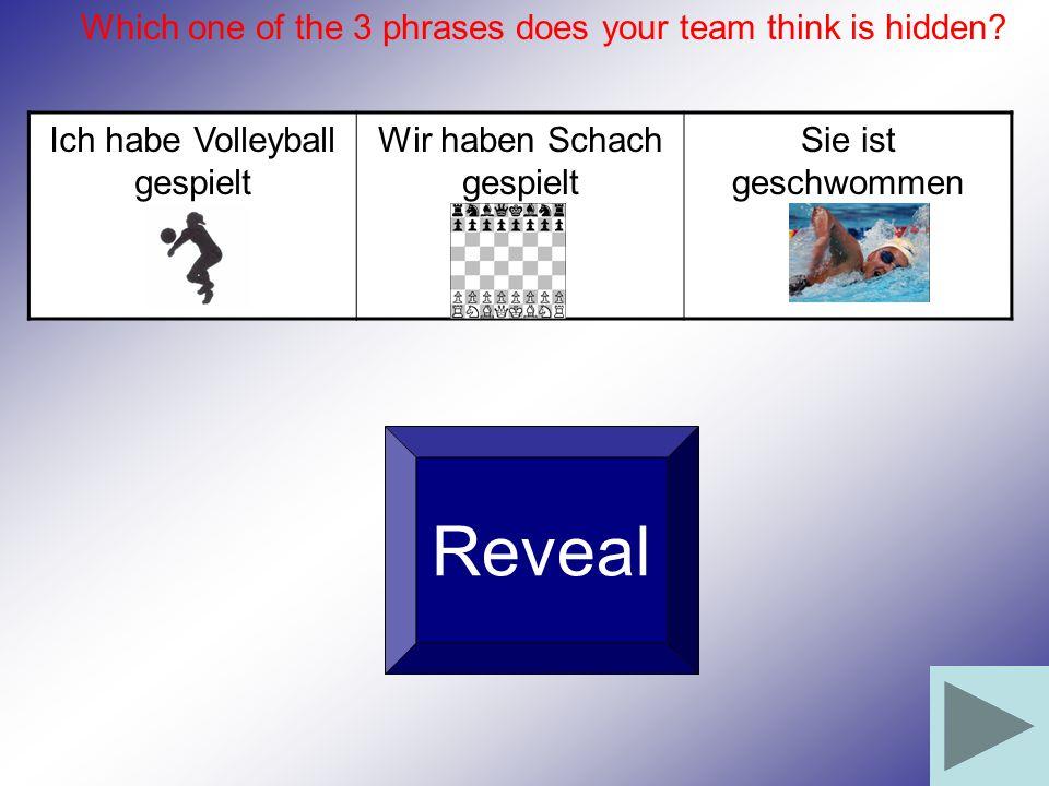 Ich habe Volleyball gespielt Wir haben Schach gespielt Sie ist geschwommen Reveal Which one of the 3 phrases does your team think is hidden?