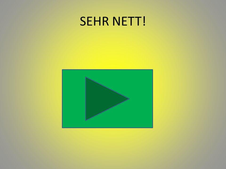 SEHR NETT!