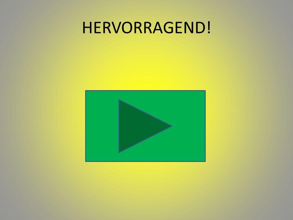 HERVORRAGEND!