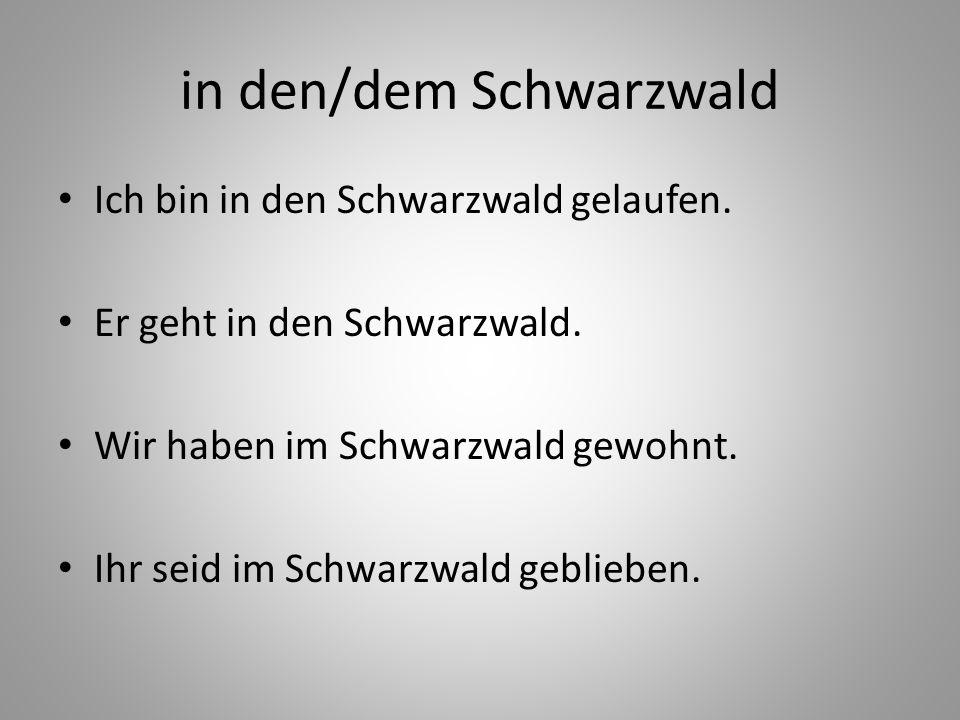 in den/dem Schwarzwald Ich bin in den Schwarzwald gelaufen. Er geht in den Schwarzwald. Wir haben im Schwarzwald gewohnt. Ihr seid im Schwarzwald gebl