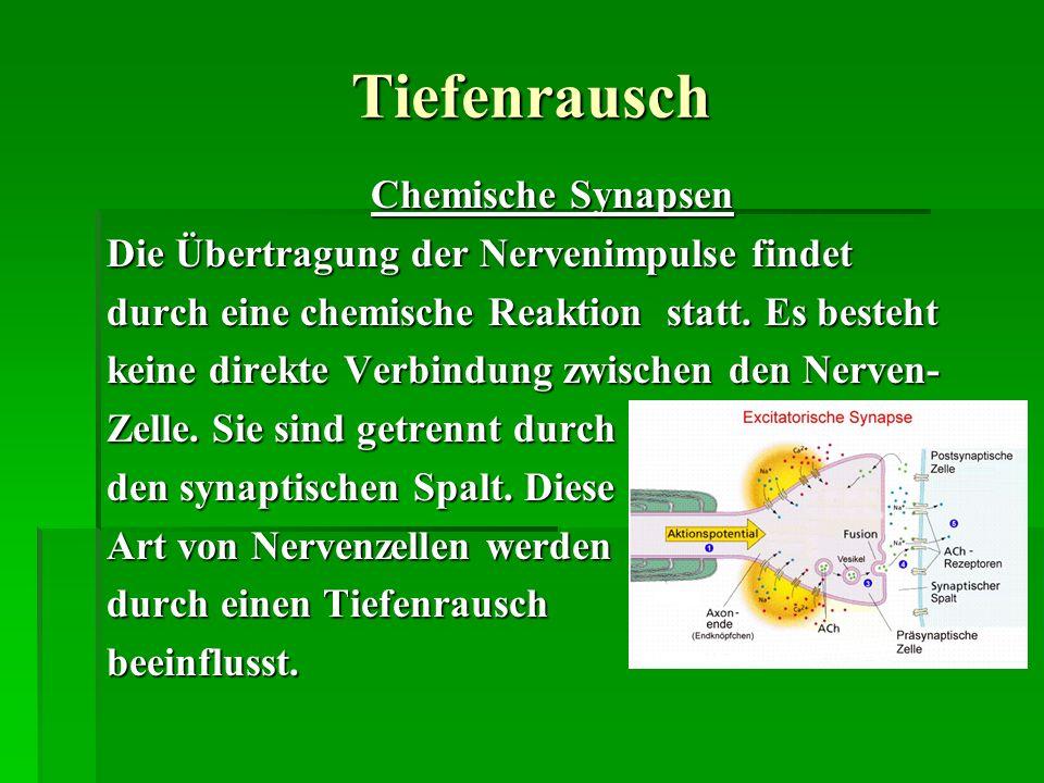Tiefenrausch Chemische Synapsen Die Übertragung der Nervenimpulse findet durch eine chemische Reaktion statt. Es besteht keine direkte Verbindung zwis