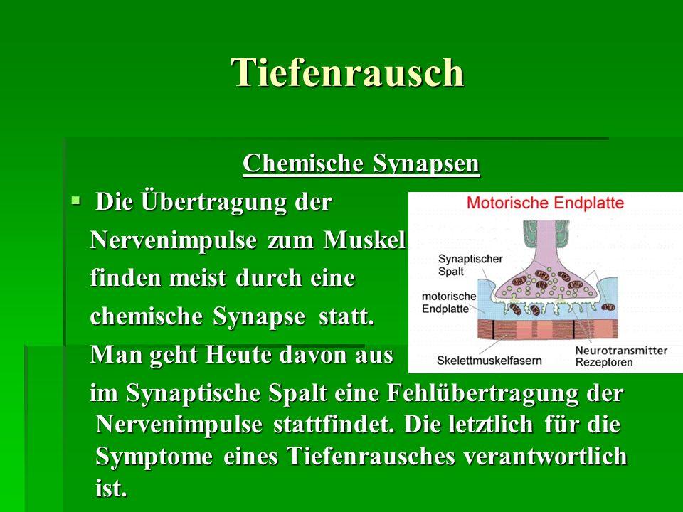 Tiefenrausch Chemische Synapsen Die Übertragung der Die Übertragung der Nervenimpulse zum Muskel Nervenimpulse zum Muskel finden meist durch eine find