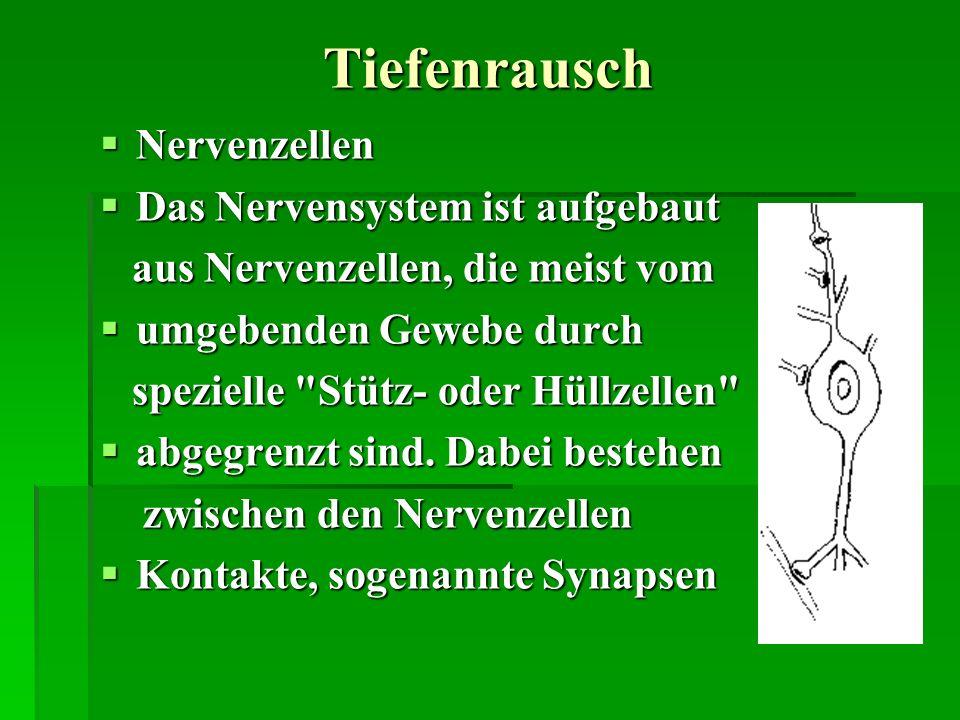 Tiefenrausch Nervenzellen Nervenzellen Das Nervensystem ist aufgebaut Das Nervensystem ist aufgebaut aus Nervenzellen, die meist vom aus Nervenzellen,