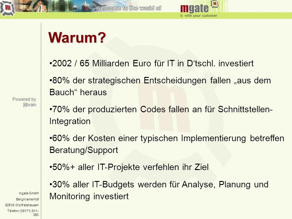 mgate GmbH Bergkramerhof 82515 Wolfratshausen Telefon (08171) 911- 350 Warum? Warum? Powered by [i]brain 2002 / 65 Milliarden Euro für IT in Dtschl. i