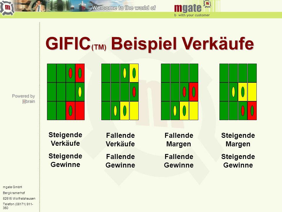 mgate GmbH Bergkramerhof 82515 Wolfratshausen Telefon (08171) 911- 350 GIFIC (TM) Beispiel Verkäufe Fallende Margen Fallende Gewinne Steigende Margen