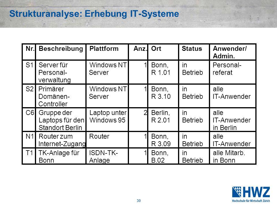 30 Strukturanalyse: Erhebung IT-Systeme