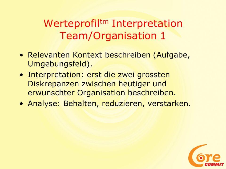 Werteprofil tm Interpretation Team/Organisation 1 Relevanten Kontext beschreiben (Aufgabe, Umgebungsfeld). Interpretation: erst die zwei grossten Disk