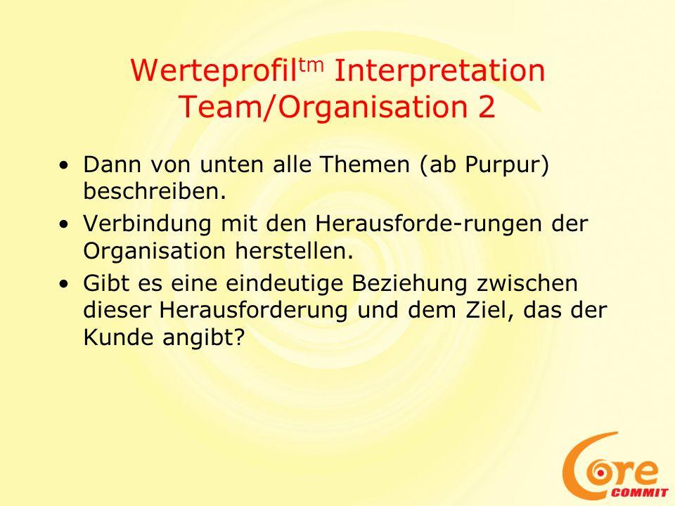 Werteprofil tm Interpretation Team/Organisation 2 Dann von unten alle Themen (ab Purpur) beschreiben. Verbindung mit den Herausforde-rungen der Organi