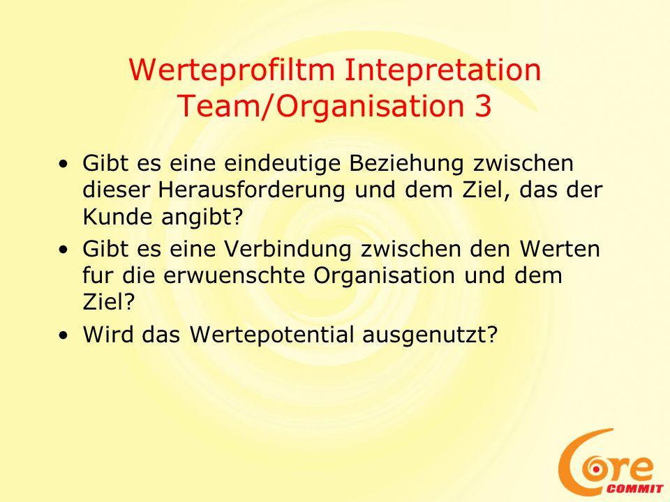 Werteprofiltm Intepretation Team/Organisation 3 Gibt es eine eindeutige Beziehung zwischen dieser Herausforderung und dem Ziel, das der Kunde angibt?