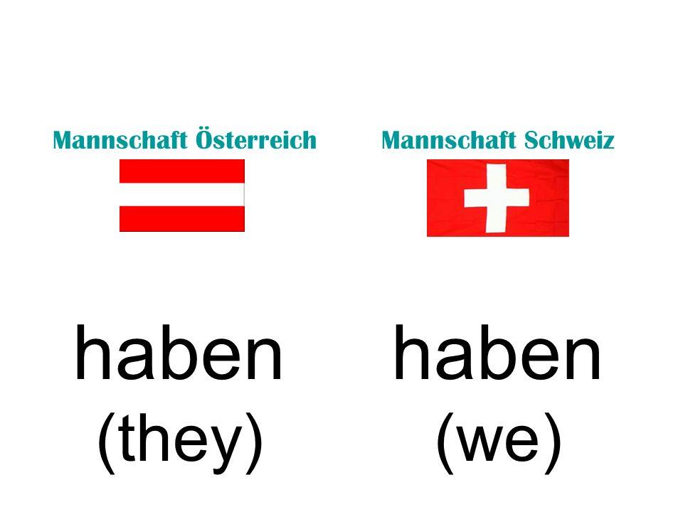 Mannschaft ÖsterreichMannschaft Schweiz haben (they) haben (we)