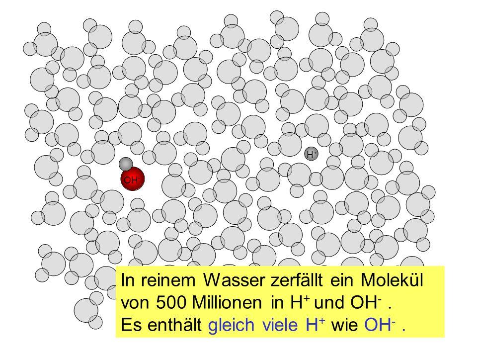 H+H+ OH - In reinem Wasser zerfällt ein Molekül von 500 Millionen in H + und OH -. Es enthält gleich viele H + wie OH -.