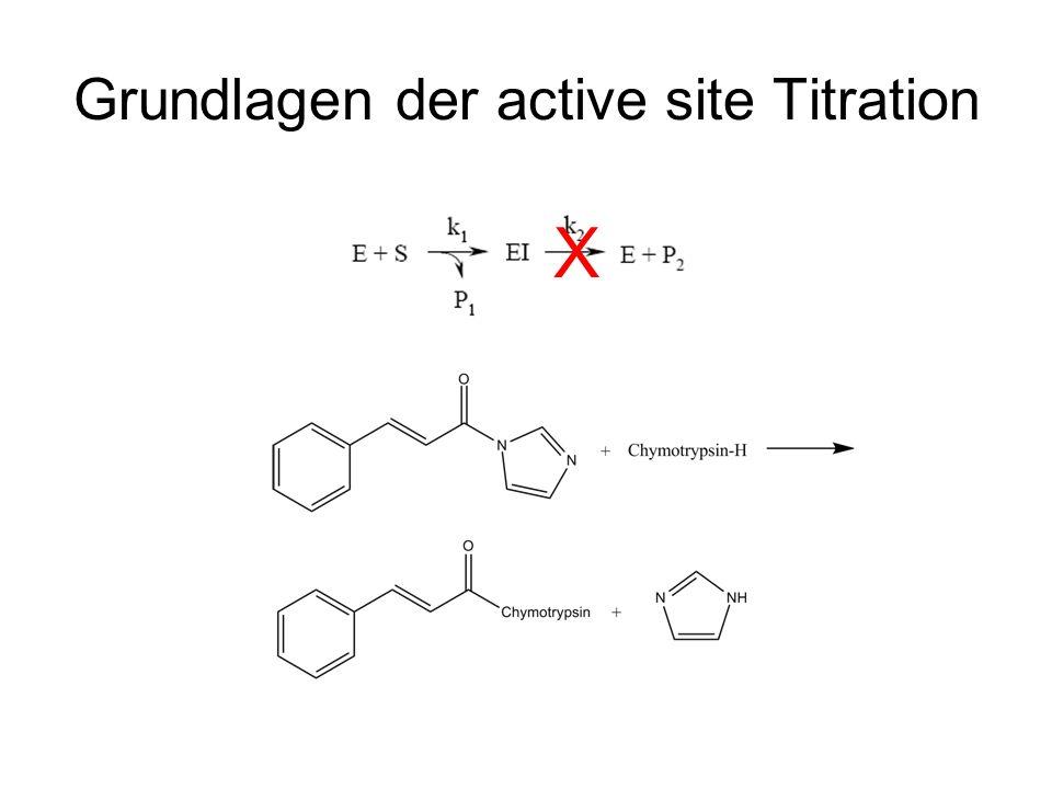 Grundlagen der active site Titration X