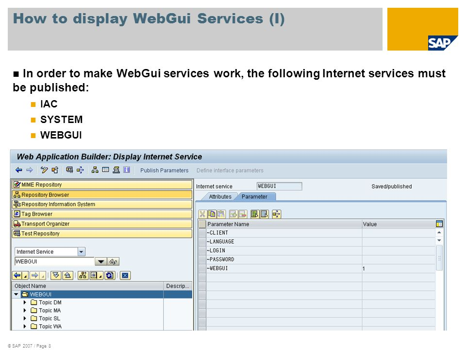 © SAP 2007 / Page 8 How to display WebGui Services (I) In order to make WebGui services work, the following Internet services must be published: IAC S