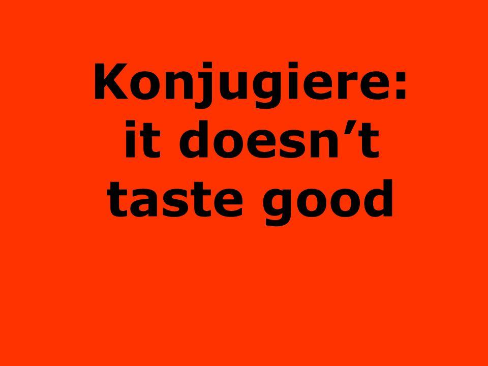 Konjugiere: it doesnt taste good