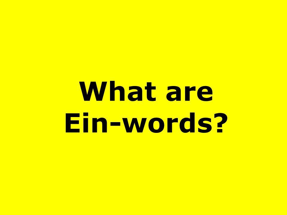 What are Ein-words?