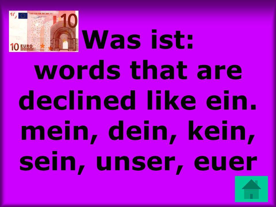 Was ist: words that are declined like ein. mein, dein, kein, sein, unser, euer