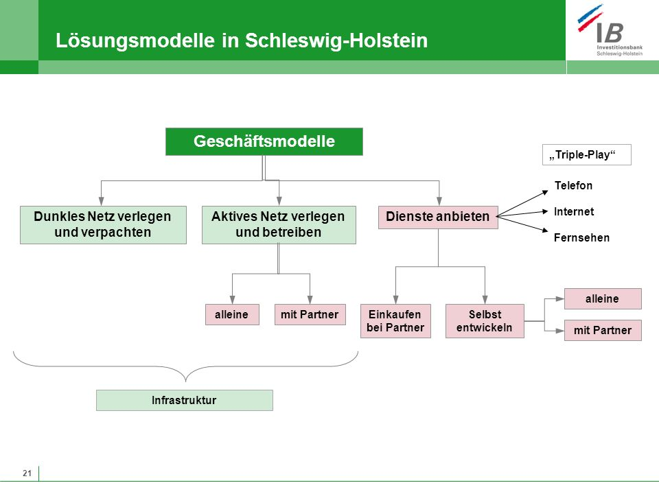 21 Lösungsmodelle in Schleswig-Holstein Geschäftsmodelle Dunkles Netz verlegen und verpachten Infrastruktur alleine Einkaufen bei Partner Aktives Netz