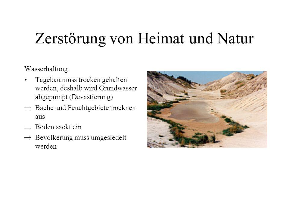 Zerstörung von Heimat und Natur Wasserhaltung Tagebau muss trocken gehalten werden, deshalb wird Grundwasser abgepumpt (Devastierung) Bäche und Feucht