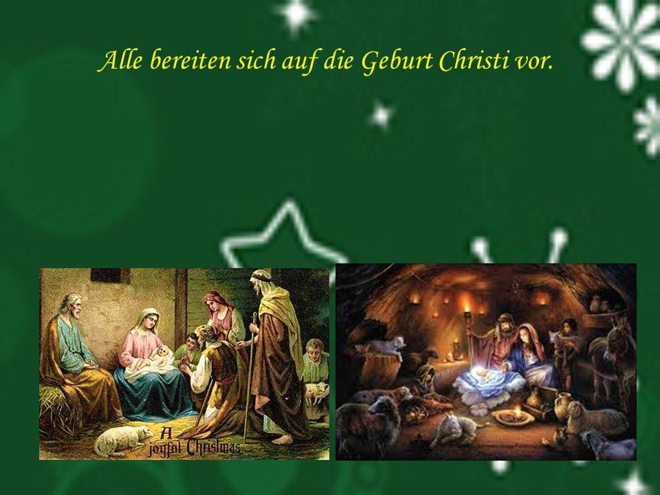 Alle bereiten sich auf die Geburt Christi vor.