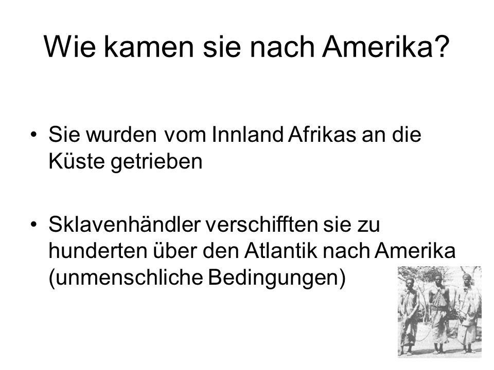 Wie kamen sie nach Amerika? Sie wurden vom Innland Afrikas an die Küste getrieben Sklavenhändler verschifften sie zu hunderten über den Atlantik nach