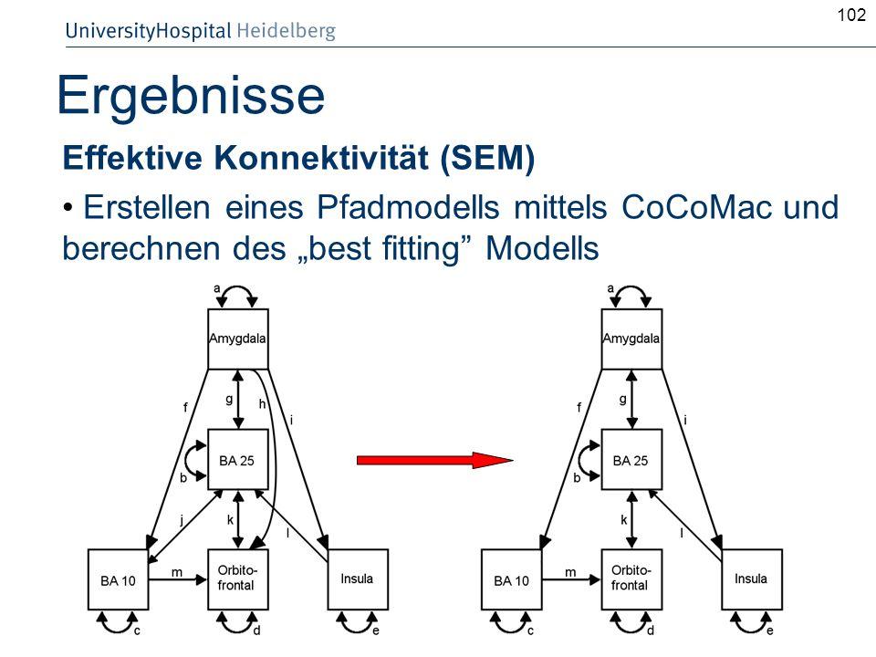 102 Ergebnisse Effektive Konnektivität (SEM) Erstellen eines Pfadmodells mittels CoCoMac und berechnen des best fitting Modells
