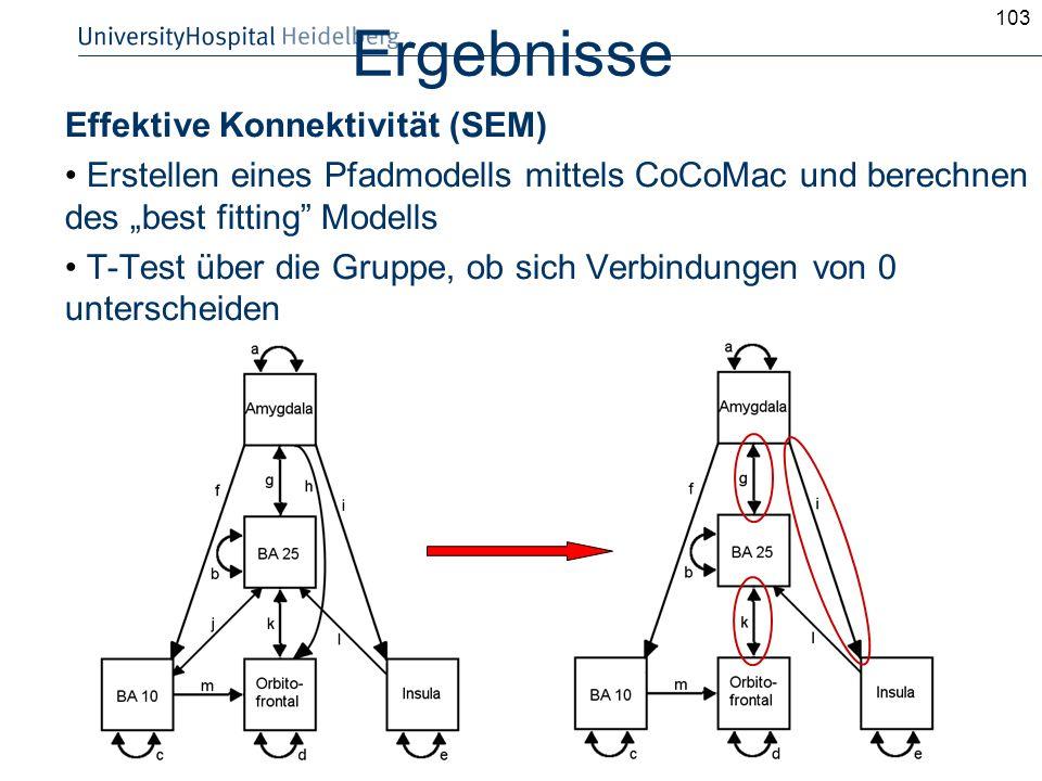 103 Ergebnisse Effektive Konnektivität (SEM) Erstellen eines Pfadmodells mittels CoCoMac und berechnen des best fitting Modells T-Test über die Gruppe