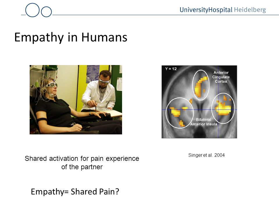 Empathy in Humans Shared activation for pain experience of the partner Singer et al. 2004 Empathy= Shared Pain?