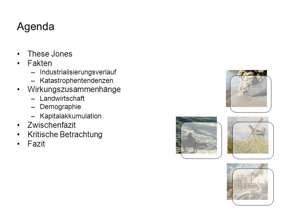 Seite 2 Agenda These Jones Fakten –Industrialisierungsverlauf –Katastrophentendenzen Wirkungszusammenhänge –Landwirtschaft –Demographie –Kapitalakkumulation Zwischenfazit Kritische Betrachtung Fazit