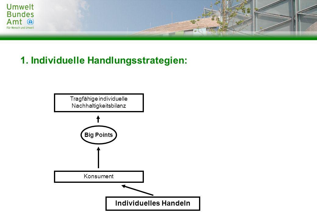 Konsument Big Points Tragfähige individuelle Nachhaltigkeitsbilanz Individuelles Handeln 1. Individuelle Handlungsstrategien: