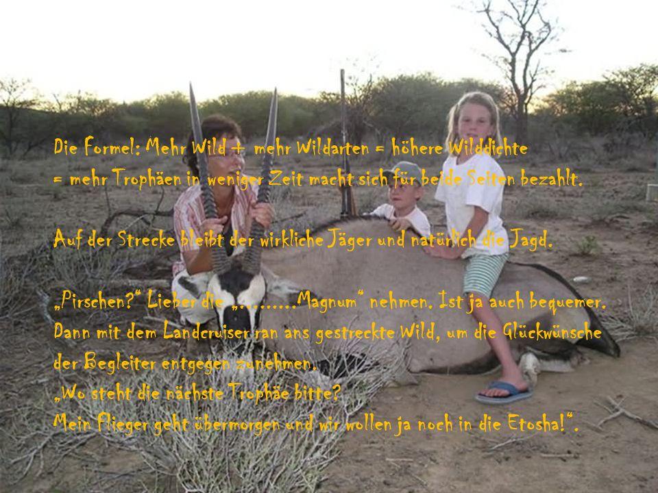 Lassen sie sich von uns ein Angebot über eine Safari in Namibia auf Plainsgame in freier Wildbahn machen.