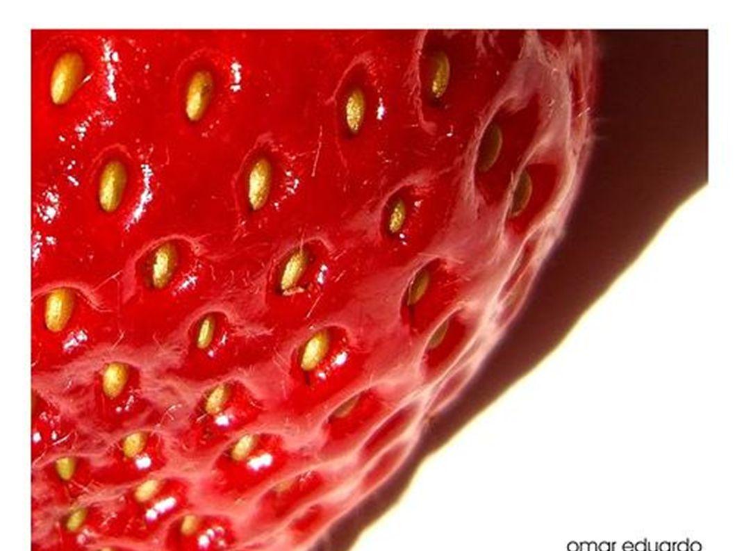 Erdbeeren sind immer rot.