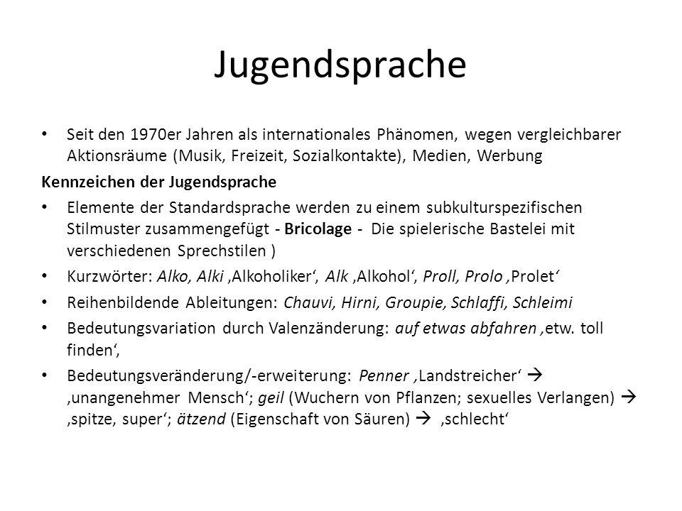 Jugendsprache Seit den 1970er Jahren als internationales Phänomen, wegen vergleichbarer Aktionsräume (Musik, Freizeit, Sozialkontakte), Medien, Werbun