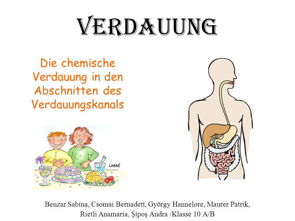 Die chemische Verdauung in den Abschnitten des Verdauungskanals Benzar Sabina, Csomai Bernadett, György Hannelore, Maurer Patrik, Rietli Anamaria, Şip