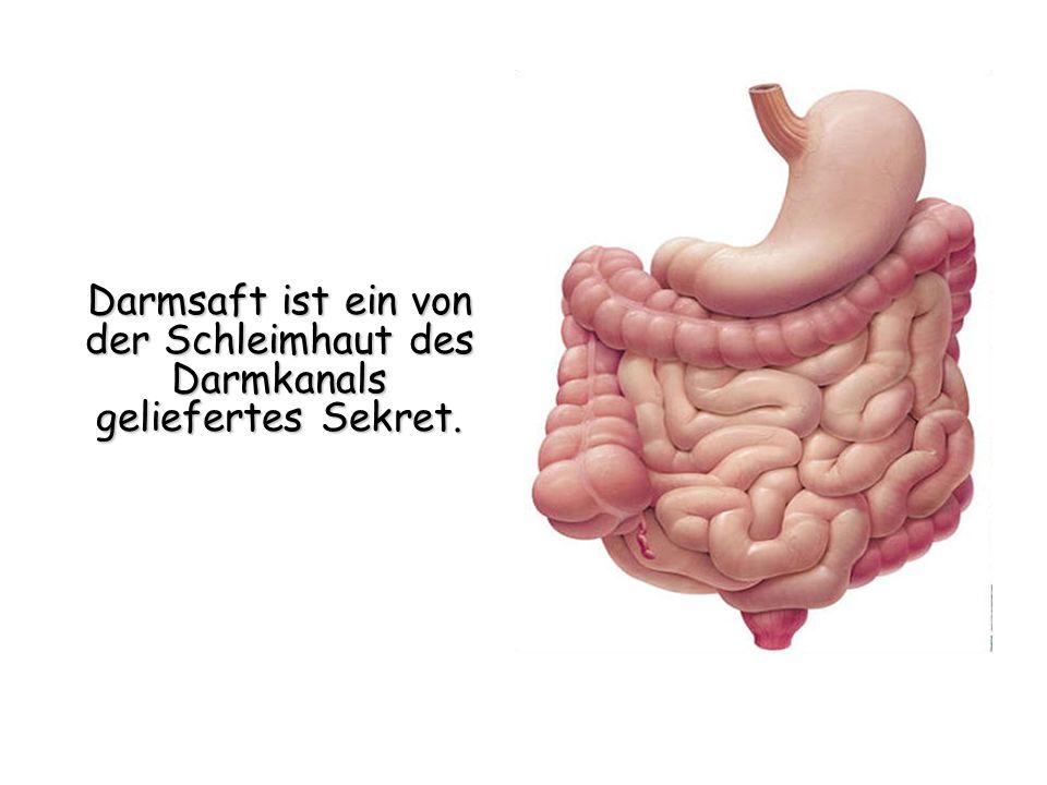 Darmsaft ist ein von der Schleimhaut des Darmkanals geliefertes Sekret.