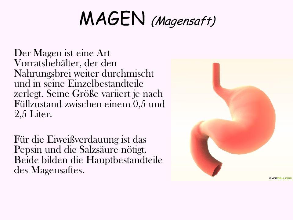 Im Magensaft sind auch Lipasen, die jedoch eine nur auf die Fettverdauung beschränkte Wirkung haben, und Schleim, der außer der Gleitfunktion auch eine Schutzwirkung für die Magenschleimhaut vor Salzsäure, die den Magen selbst verdauen könnte, ausübt.