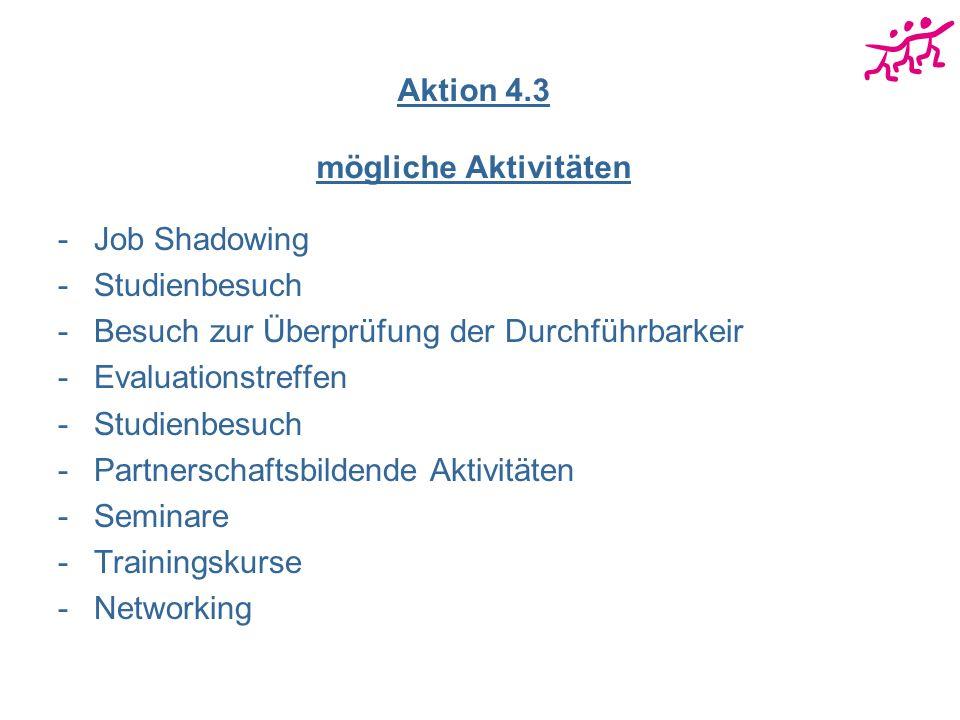 Aktion 4.3 mögliche Aktivitäten -Job Shadowing -Studienbesuch -Besuch zur Überprüfung der Durchführbarkeir -Evaluationstreffen -Studienbesuch -Partnerschaftsbildende Aktivitäten -Seminare -Trainingskurse -Networking