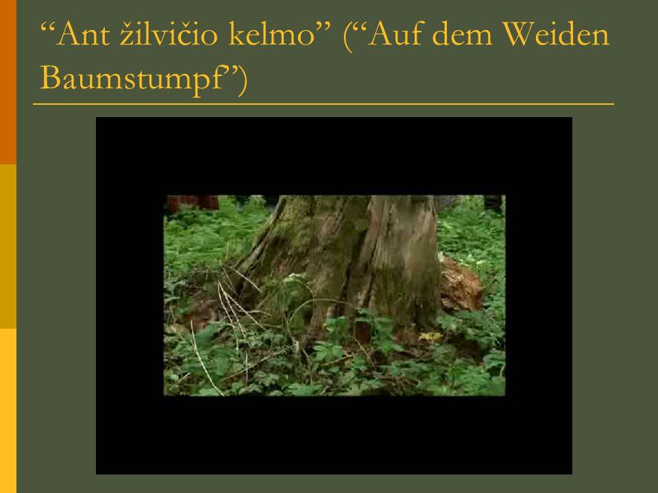 Ant žilvičio kelmo (Auf dem Weiden Baumstumpf)