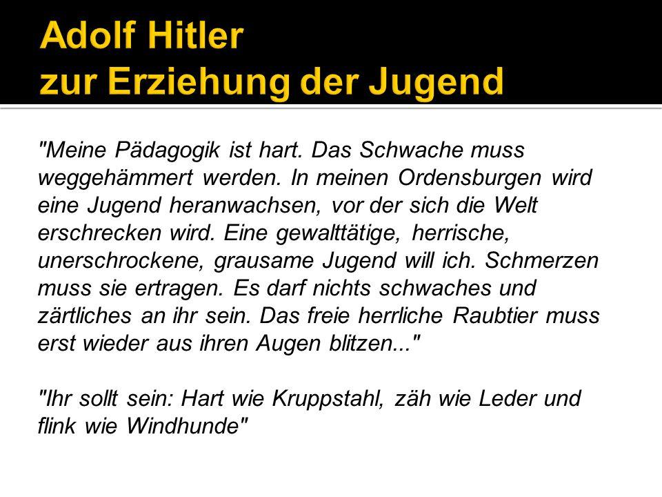 Die nationalsozialistische Jugend- und Bildungspolitik konnte 1933 nicht auf einen Schlag umgesetzt werden, sondern verdrängte das Erziehungssystem der Weimarer Republik schrittweise: 1.