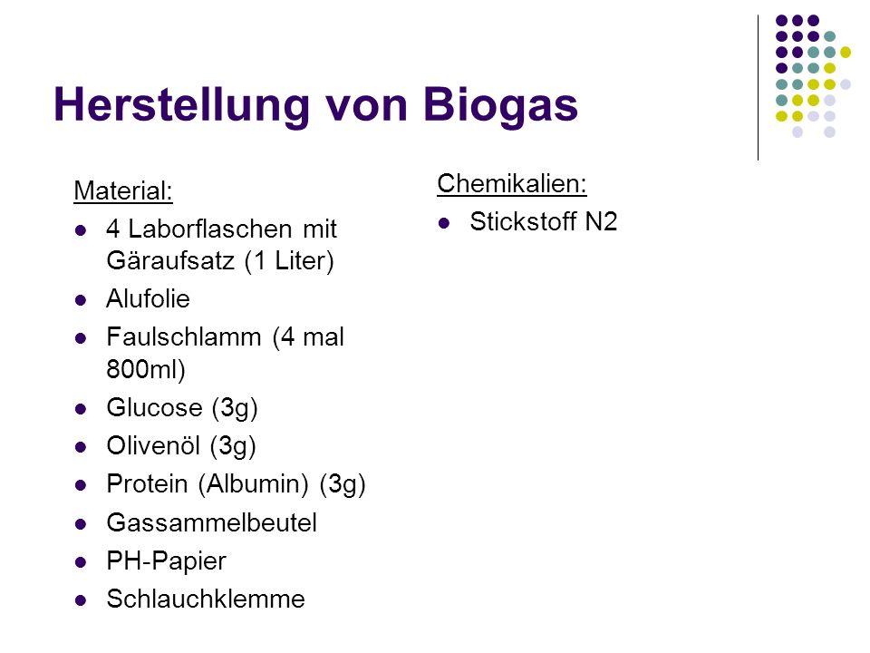 Herstellung von Biogas Material: 4 Laborflaschen mit Gäraufsatz (1 Liter) Alufolie Faulschlamm (4 mal 800ml) Glucose (3g) Olivenöl (3g) Protein (Album