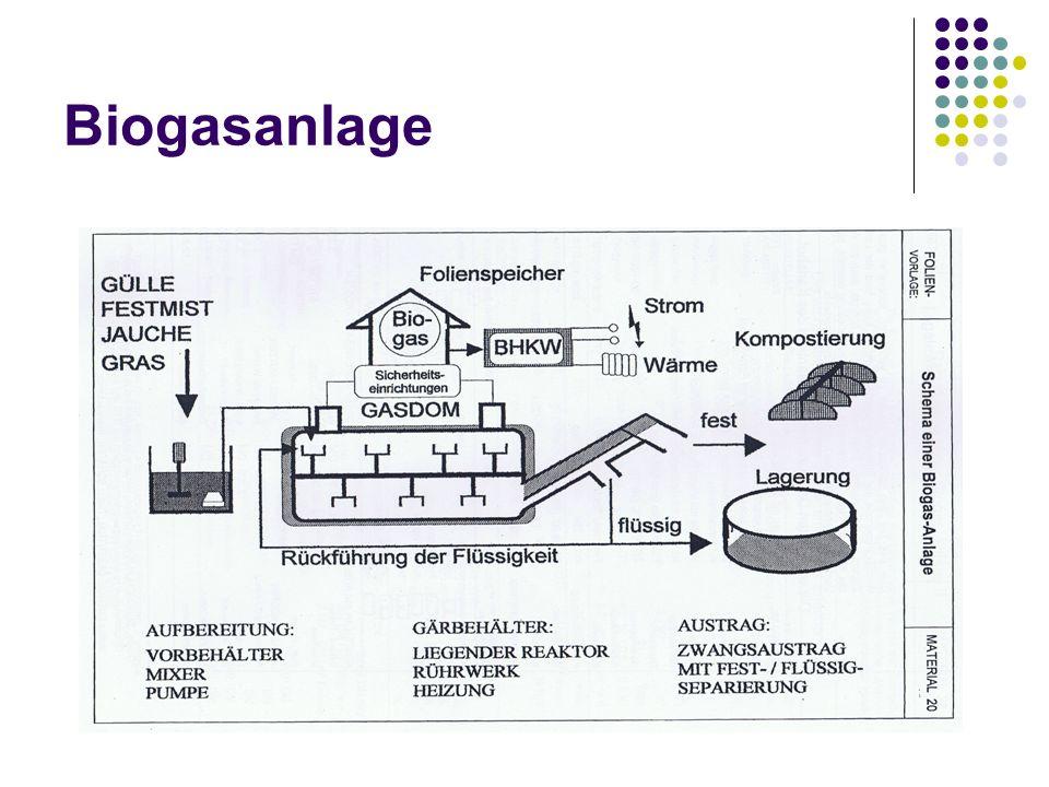 Vergleich: Versuch - Biogasanlage Versuch: Gassammelbeutel zum Festhalten des Biogases Faulschlamm Biogasanlage: Biogasspeicher/ Folienspeicher zum Festhalten des Biogases Abfall (Gülle, Festmist, Jauche, Gras)