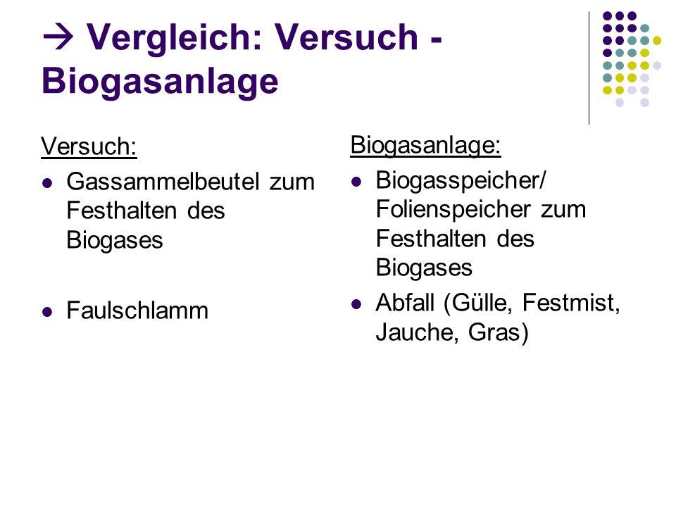 Vergleich: Versuch - Biogasanlage Versuch: Gassammelbeutel zum Festhalten des Biogases Faulschlamm Biogasanlage: Biogasspeicher/ Folienspeicher zum Fe